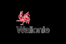 Logo Waals gewest